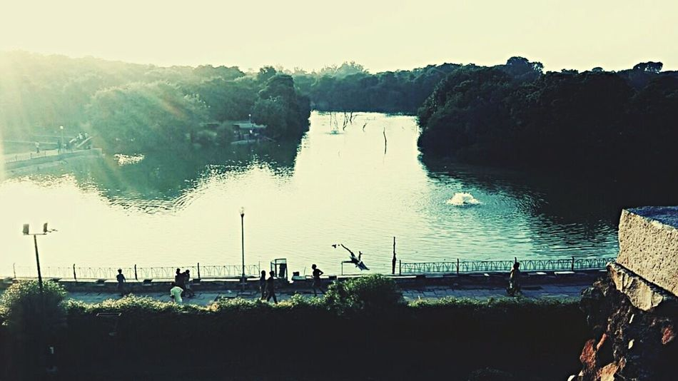 Just in time before sunset. Serene Silhouettes Joggers Hauzkhas Lake View New Delhi India