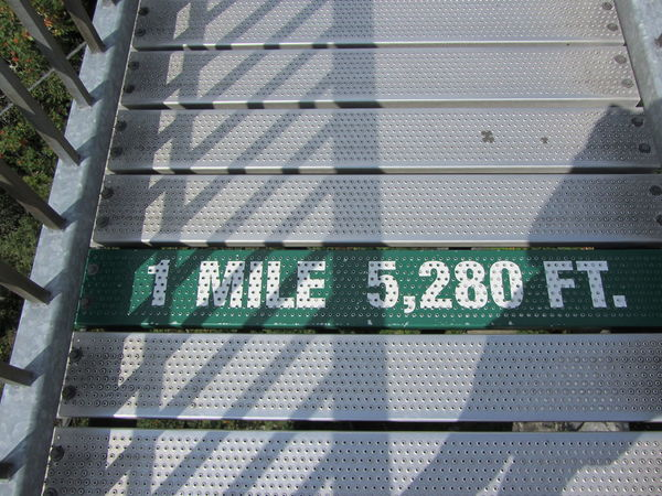 Grandfather Mountain, North Carolina Milemarker North Carolina NorthCarolinaMountains Blueridgemountains Close-up Day Grandfather Mountain Mile High Mile High Bridge Mountain Nature No People Outdoors