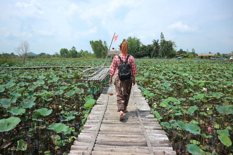 Woman walking on wooden bridge at lotus farm