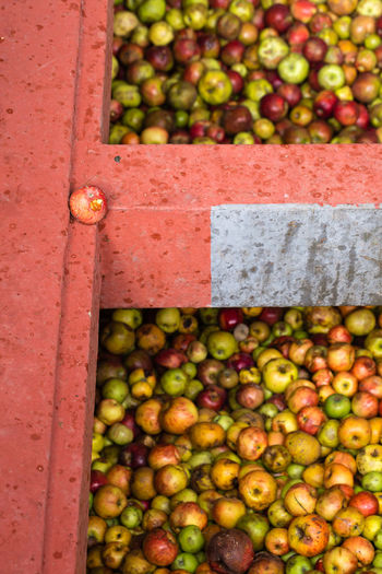 High angle view of apples in container