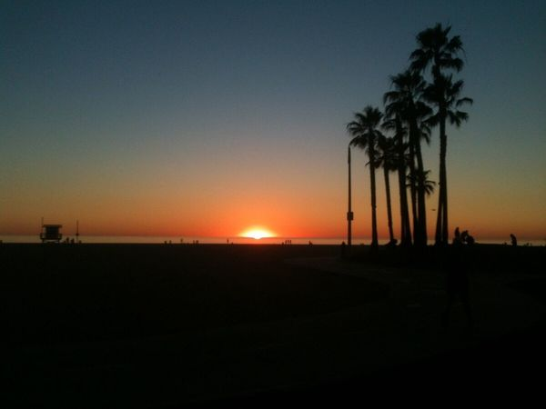 Only had my phone to shoot with on this day, but still caught a decent shot of the sunset in Venice Beach. Sunset Silhouettes No Filter Sunset_collection Sunset Palm Trees Sky Palm Tree Lifeguard Station Life Is A Beach Los Angeles, California Silhouettes No People Tranquil Scene Tranquility Summer Views Silhouette Beach Venice Beach Landscape_photography Landscape_Collection Landscape No Filter, No Edit, Just Photography