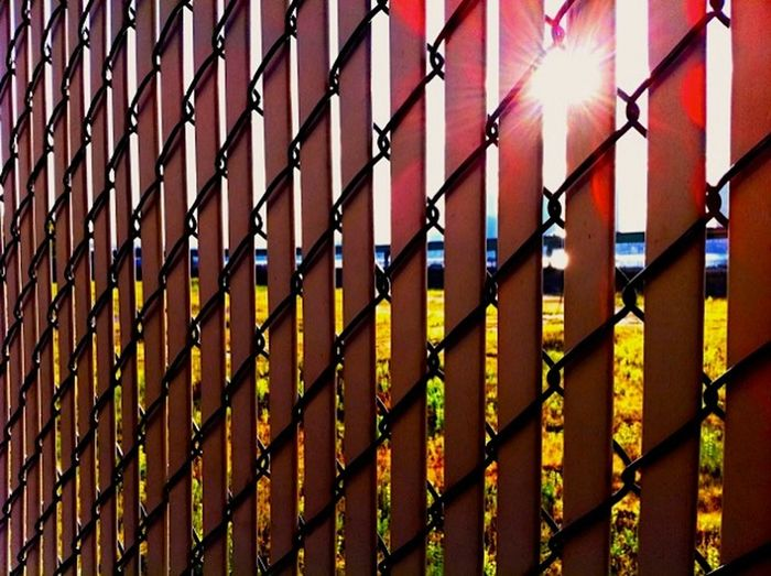 Fence with sunlight Abstract Design Fence Geometry Light Metal Outdoors Railing