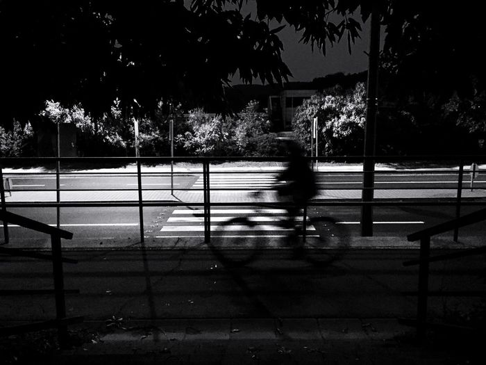 Bicycle City City Life Nightphotography IPhoneography Streetphotography Street Photography Light And Shadow Lighting Equipment Light Up Your Life Darkness And Light Transportation Blurred Motion Blackandwhite Monochrome Black And White Black & White Blackandwhite Photography