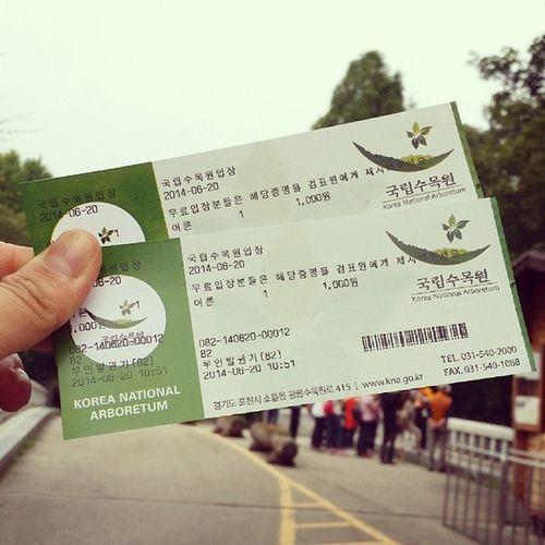 0620 광릉수목원 수목원 국립수목원 숲 남양주 광릉 데일리 daily 숲스타그램 넘넓어넓다!!!!
