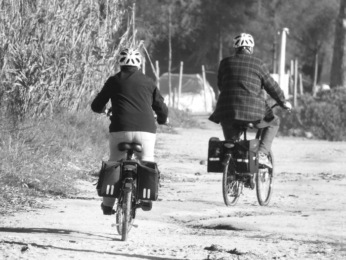 Full length rear view of friends riding bicycles on footpath