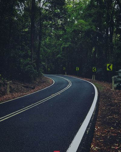 Tree Road Plant Direction The Way Forward Symbol Sign Outdoors Day Curve Beauty In Nature Transportation No People Marking Nature Road Marking Empty Road Diminishing Perspective Tranquility Growth