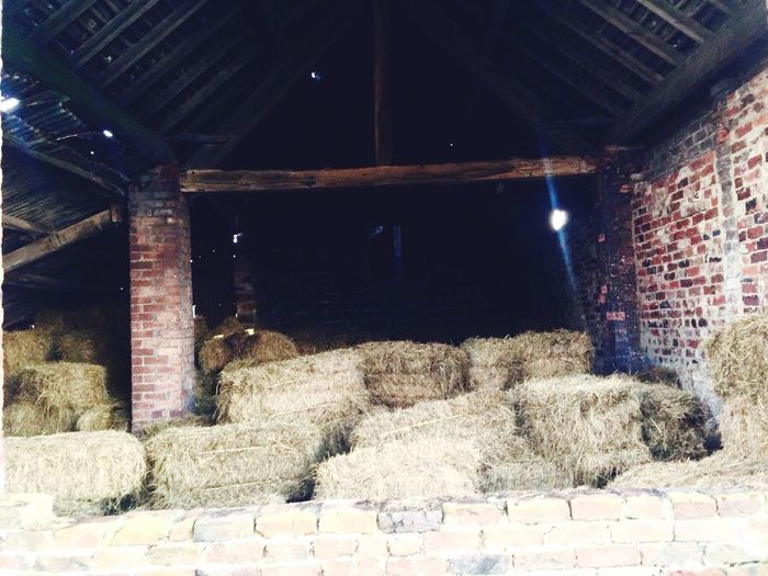 Down On The Farm Making hay in the autumn sunshine