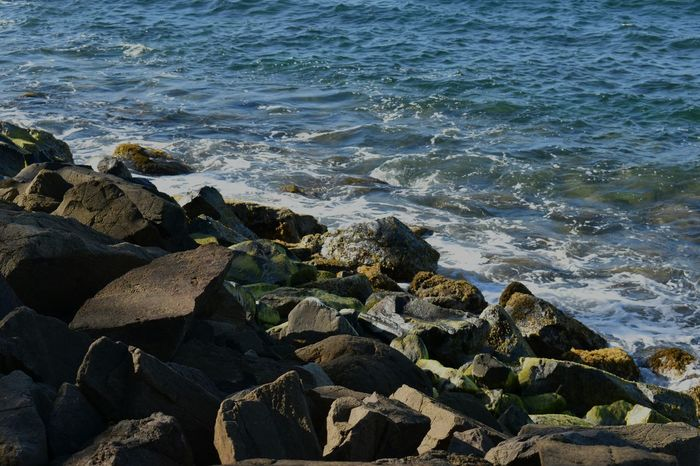 Water Sea Nature Wave Real People Outdoors Day Beauty In Nature Rocks Rocks And Moss