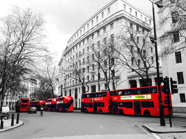 Bunch Of Red Bus London_only Uk Collection Colorsplash Check This Out Hello World Pbotography Photography Loveit Best EyeEm Shot My Hobby 2016 Picture Transportation LONDON❤ Double Decker Bus Greenpark Artoftheimage Bestoftheday Camera EyeEm London Lifestyle