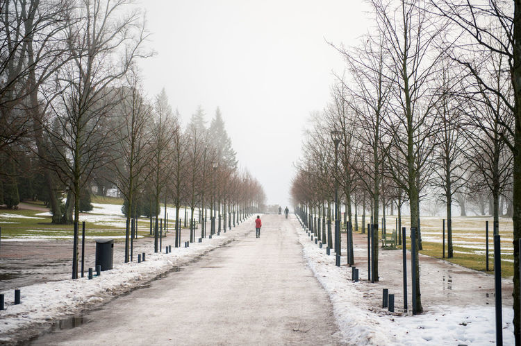 Day Fog Helsinki LINE Nature No People Outdoors Route Shape Sky Tranquility Tree Tree Winter