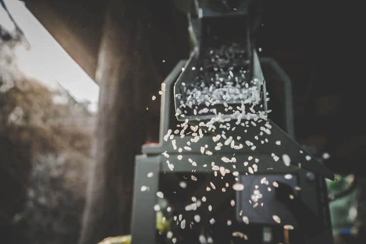 Rice Milling Machine Rice Rice Paddy Rice - Cereal Plant Equipment Equipments Drop Rotate Sticky Rice Food Foodphotography Cooking Do It Yourself Countryside Countryside Life