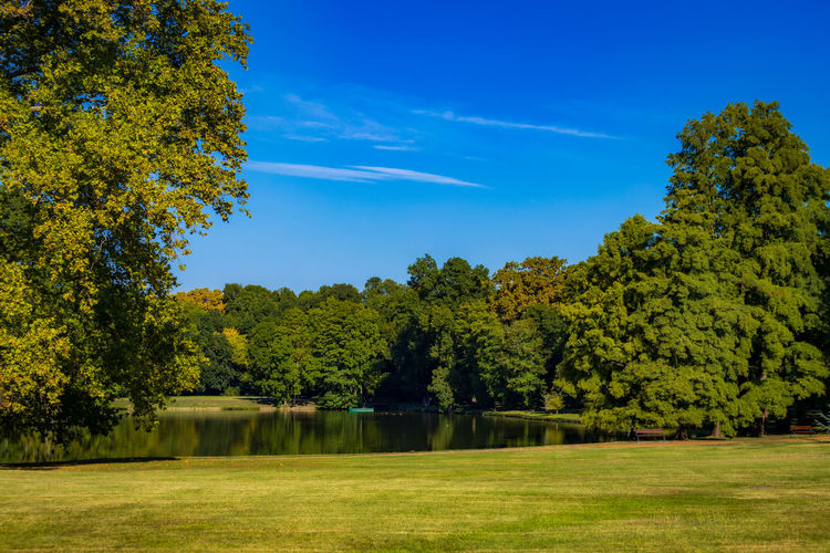 Scenic view of trees by lake against blue sky
