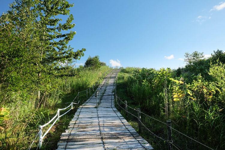 Hiking Hokkaido