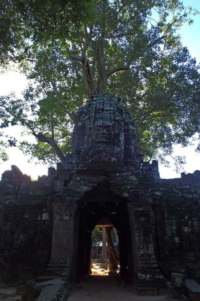 Angkkor, Cambodia Angkor Arch Architecture Building Exterior Built Structure Cambidia Famous Place History Old Religion Spirituality The Past Tourism Travel Travel Destinations Tree