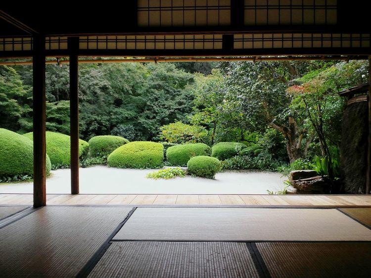 詩仙堂 。まったり。 Shisendo Temple in Kyoto. Chill out;) 京都 神社仏閣 詩仙堂 美しい 庭園 旅行 Kyoto Japan Chill Cozy Beautiful Garden Nature Stunning EyeEmNewHere