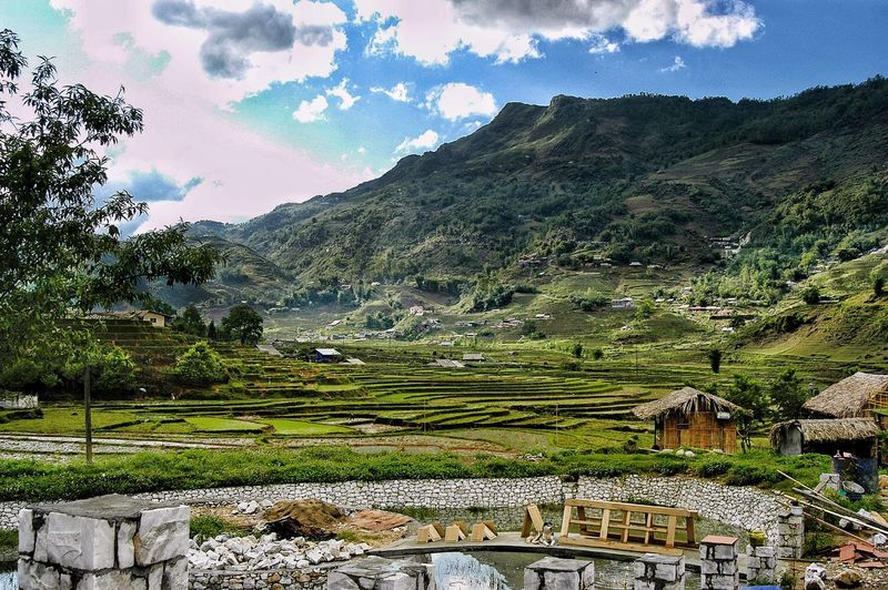Vietnam SaPa Plant Landscape Tranquil Scene Tree Beauty In Nature Tranquility Growth Sky Environment Scenics - Nature No People Land Nature Mountain Field Day Agriculture Green Color Rural Scene Outdoors