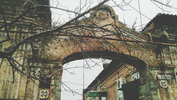 Дорога в колледж арка Старина сухое дерево