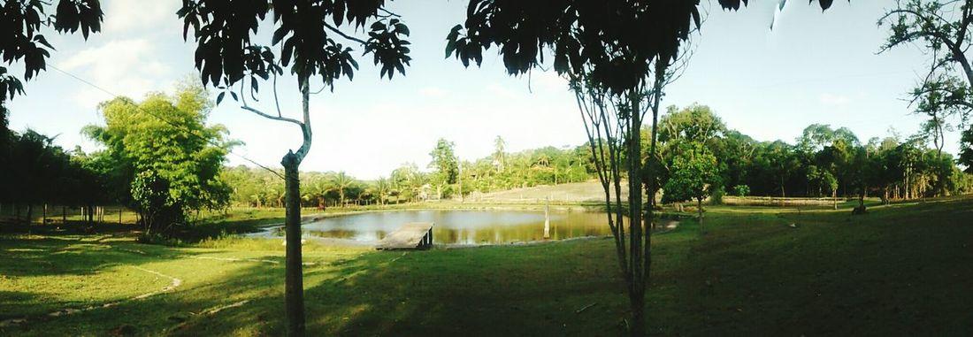 Natureza, uma das melhores coisas do Mundo! Relaxing