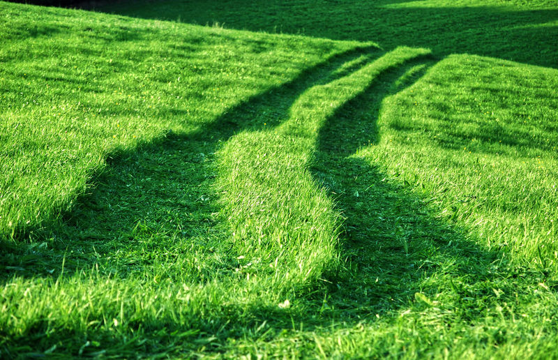 High angle view of shadow on grassy field