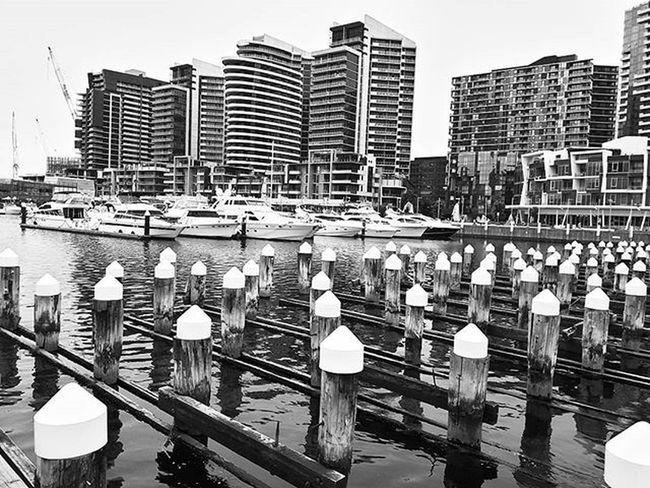 Whiteheads... Docklands Australia Melbourne