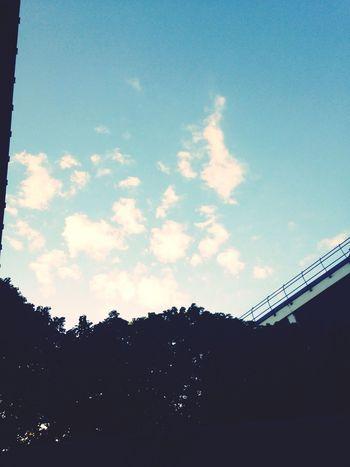Elle s'assoit. Regarde le ciel et pensa. Parfois les choses les plus simples sont les meilleures.. Ciel Sky Penser Regarder
