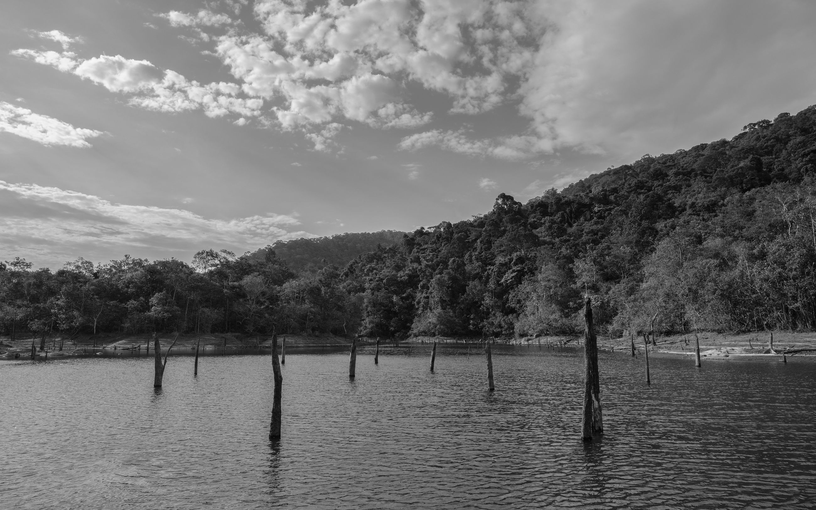 water, sky, cloud - sky, waterfront, scenics - nature, tree, beauty in nature, tranquil scene, tranquility, nature, day, plant, non-urban scene, no people, mountain, lake, post, wooden post, outdoors