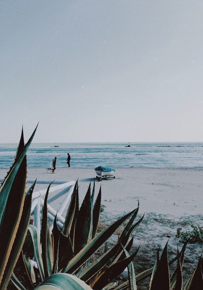 beach life Seascape Sea Water Sky Horizon Over Water Horizon Beach Scenics - Nature Beauty In Nature Land Fishing Boat Tranquility Mode Of Transportation Day