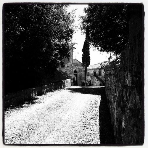 Siena countryside The Way Forward Tree Day Built Structure No People Road Nature Architecture Outdoors Enricofallico Eye4photography  Eyemgallery EyeEm Best Shots Blackandwhite Black And White Blackandwhite Photography Toscana Italy Landscape_Collection