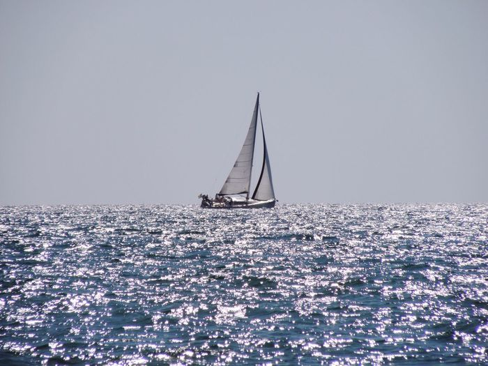 Clear Sky Sea Blue Water Nautical Vessel Nature Sailing Sky Canvas Sailboat Outdoors Scenics Horizon Over Water Day Beauty In Nature Mast Adventure No People Yachting Beach View Blue And Silver Seascape Silversea Sunlight Silver Sunlight EyeEmNewHere Sommergefühle Breathing Space Breathing Space Investing In Quality Of Life The Week On EyeEm Done That. Second Acts Perspectives On Nature An Eye For Travel Go Higher Inner Power Summer Exploratorium