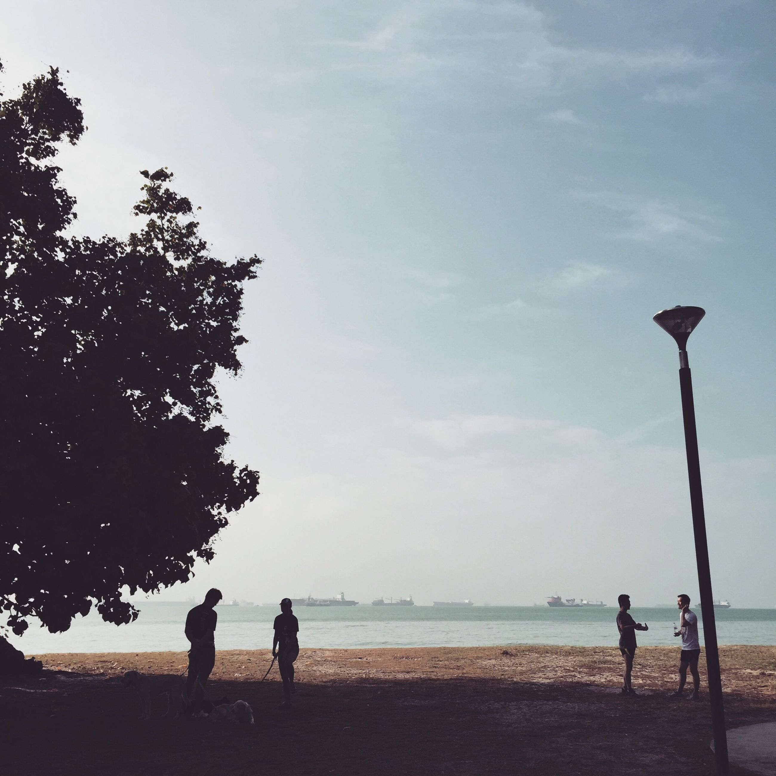 sky, water, sea, horizon over water, beach, lifestyles, leisure activity, silhouette, men, rear view, tranquility, full length, standing, shore, nature, person, tranquil scene, scenics