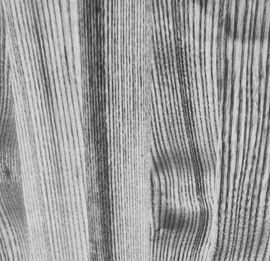 Lines And Shapes Backgrounds Pattern Textile Textured  No People Close-up Full Frame High Angle View Indoors  Still Life Day Material Striped Man Made White Color Wood Grain Wood