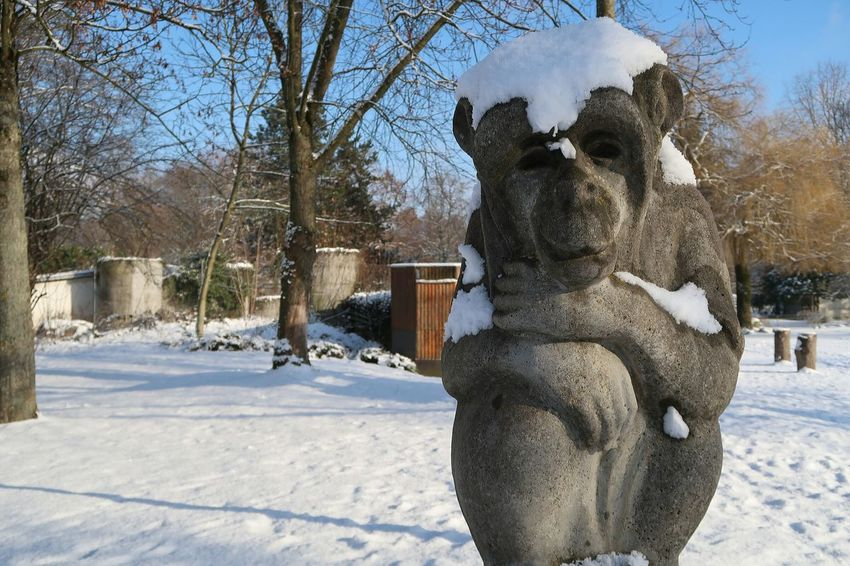 Snow Cold Temperature Winter Tree Bare Tree Outdoors Nature Statue Day Architecture No People Sculpture Sky Snowing Monkey Snow ❄ Wintertime