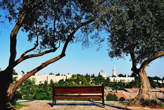 Hello World Relaxing Bench Jerusalem Landscape Old City Hollyland Break The Mold The Great Outdoors - 2017 EyeEm Awards