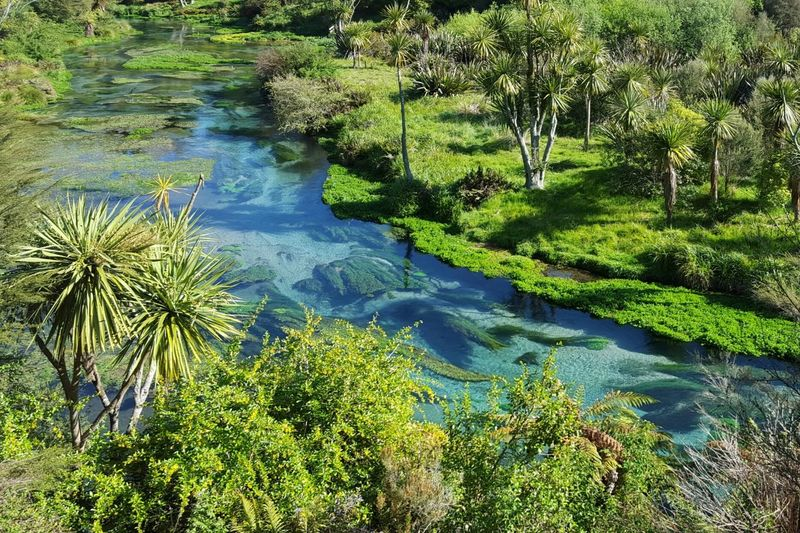 Green Blue New Zealand Beauty Nature Water