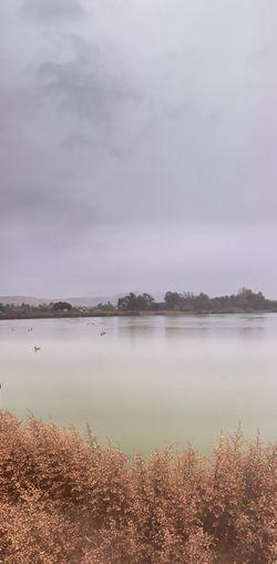 Gloomy morning Rainy Day Fremont Lake Elizabeth Water Tranquility Sky Tranquil Scene