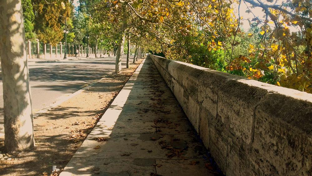 Thecitylight A Walk To Remember EyeEm Best Shots EyeEmNewHere TheWeekOnEyeEM