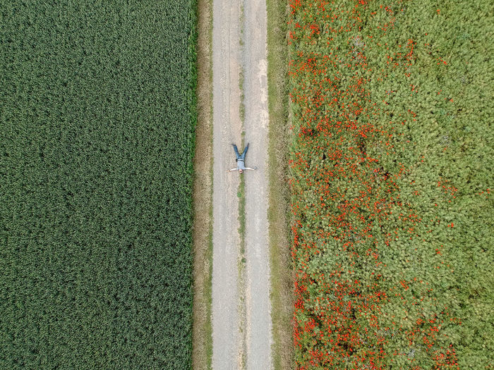 Aerial view of man lying on road amidst field