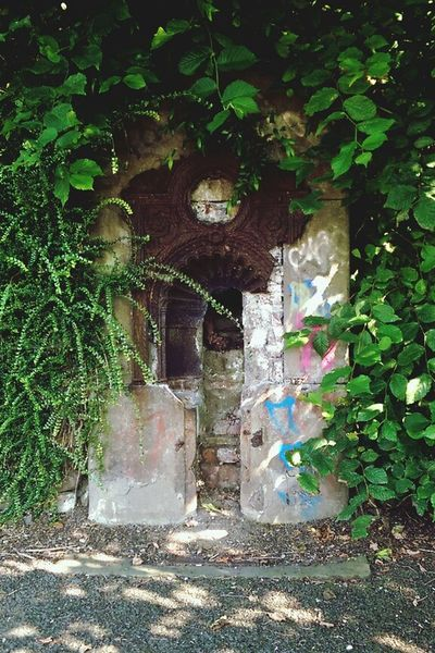 Overgrown Lost Broken Rust Graffiti Arch Drinking Fountain Stone Metal Plant