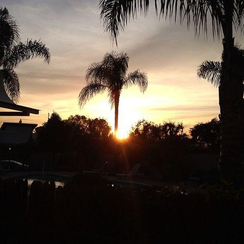 My View Cali Calisoul