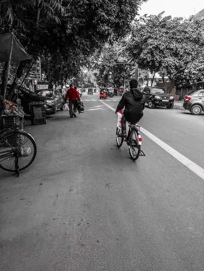 Creative Colours Bicycle EyeEm Selects Bicycle Transportation Riding Motorcycle Mode Of Transport Road Land Vehicle Real People Day Outdoors Men Biker People Adult