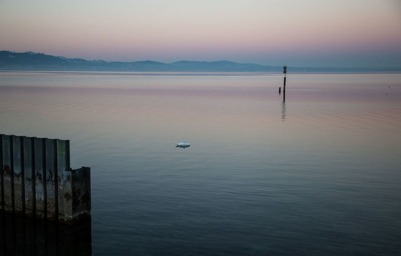 a new day Water Beauty In Nature Scenics - Nature Tranquility Sky Tranquil Scene Sea Waterfront Nature No People Sunset Reflection Idyllic Animal Non-urban Scene Animal Themes Vertebrate Outdoors Wooden Post Bodenseeregion