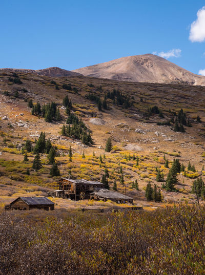 Sep 2018 - Mount London, Colorado 19th Century Buildings Autumn colors Colorado Rocky Mountains Architecture Beauty In Nature Blue Day Environment Field Land Landscape Mountain Nature No People Outdoors Plant Scenics - Nature Sky Tranquil Scene Tranquility Tree