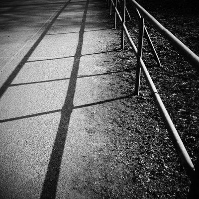 Shadow Blackandwhite
