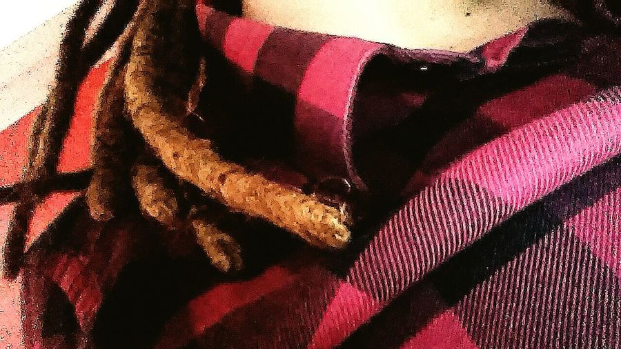 Dreds  Kocham Ukochana Koszula 👌