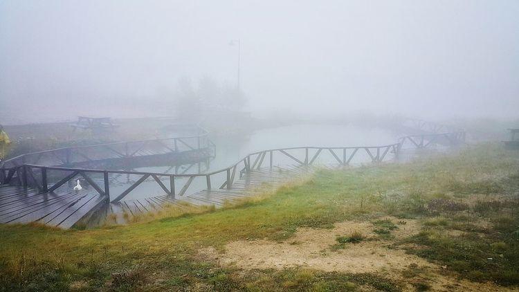 Fog Smog Social Issues Bridge - Man Made Structure Outdoors No People Day Dawn Winter Sky Nature Grass City Turkey Karadeniz Duman Sis Gizem Foggy Sisli Magical