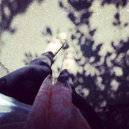 Sunnnny Day