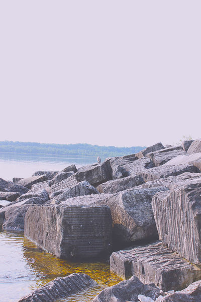 Bruce Trail, Ontario, Canada Rocks And Water The Great Outdoors - 2016 EyeEm Awards Concrete Stone Seagull Serene Peaceful Calm Calm Water Lake Lakeshore Shoreline Rockpile Nature Rocks Stacked Heavy The Great Outdoors – 2016 EyeEm Awards Bird