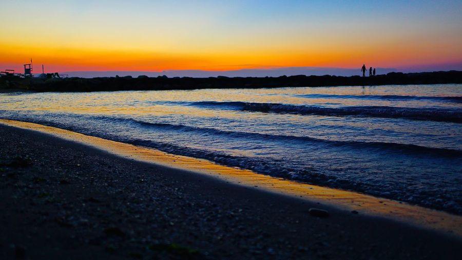 Surface level of landscape at sunset