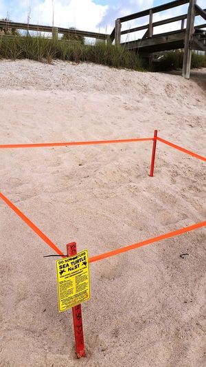 High angle view of warning sign by turtle nest at beach