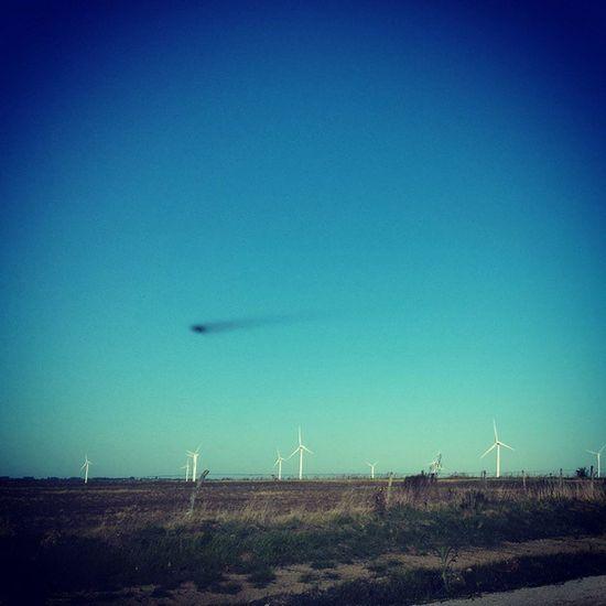 Tarariras ruta 22 Roadscenes Wind Energy Molinos De Viento Energy Production Campo Ovni Ovni UFO Roadway